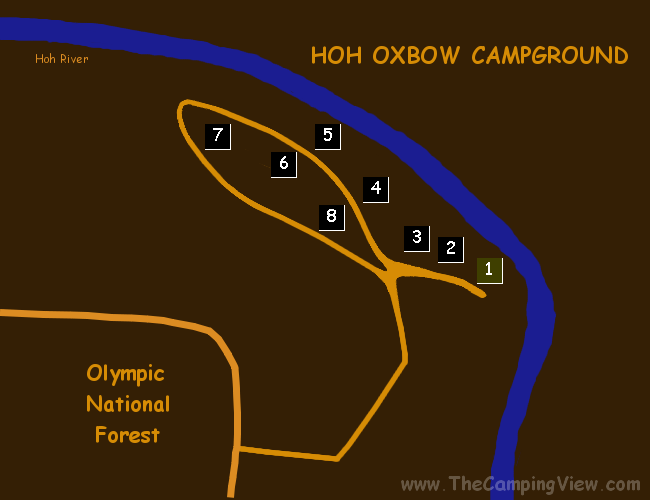 HOH OXBOW ; Hoh Oxbow ; Hoh Oxbow Campground@47.81131001626008,-124.25082206726074